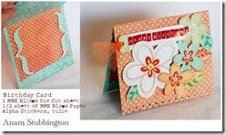 anam_birthday card