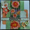 Mary Bezdicek_Bloom