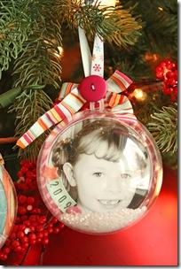 JanaEubank_Ornaments6