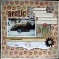 Fiona Lally_Arctic