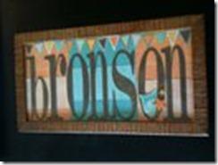 bronson project